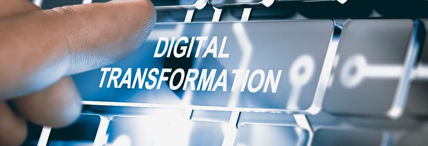 Conseils en transformation digitale : faire confiance à une agence spécialisée